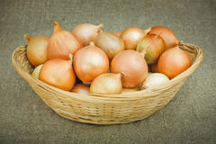Onions in a Basket Royalty Free Stock Image