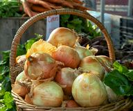 Onions in Basket Royalty Free Stock Photography