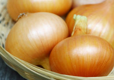Onions in a basket. Some bulbs close-up in the basket Royalty Free Stock Photography