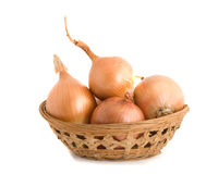 Onions in basket. Isolated on white background Royalty Free Stock Photography