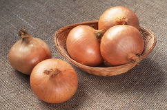 Onions in basket Royalty Free Stock Image