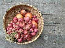 Onions in basket Royalty Free Stock Photo