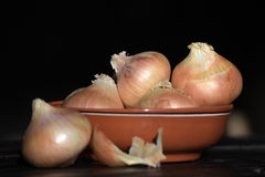 Onions in a bowl on a table Royalty Free Stock Image