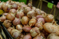 Onions in a box from a market Royalty Free Stock Photography