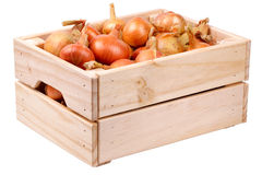 Onions in a box  Stock Photography