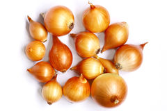 Onions bunch on a white background. Bulbs many, Golden color Royalty Free Stock Image