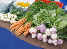 Onions and Carrots Royalty Free Stock Photography