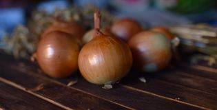 Onions close up on the table royalty free stock images
