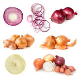 Onions Collection Isolated on White. Onions collection, isolated on white background.  Includes, red, brown, and white varieties Royalty Free Stock Photos