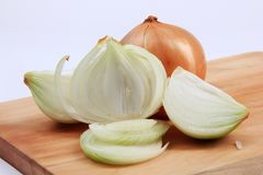 Onion with a white background royalty free stock photo