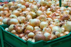 Onions on the counter of the store. Place for your text. royalty free stock photography