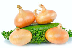 Onions, cucumber, parsley Royalty Free Stock Photos