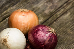 Onions of different qualities on a wooden bench Royalty Free Stock Image
