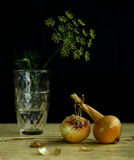 Onions and dill. Yelow dill flowers and onion Stock Images