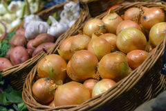 Onions on display Royalty Free Stock Photo
