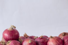 Onions on the floor,Front view Stock Photos
