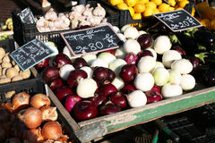 Onions on a French market stall. Fresh onions on a French market stall in Nice France Royalty Free Stock Photography