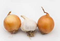 Onions and garlic. Vitamins on the kitchen table Stock Photography