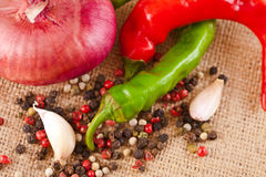 Onions, garlic, chili pepper and spices on the table Royalty Free Stock Photos