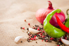 Onions, garlic, chili pepper and spices on the table Stock Images
