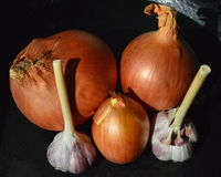 Onions and garlic. Dug them up and dried them to long kept. Garlic and onion have many vitamins, and is a wonderful remedy for colds. A very popular remedy in Stock Photos