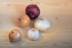 Onions and garlic head Royalty Free Stock Photo