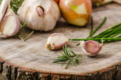 Onions, garlic and herbs bio from the garden Stock Photo
