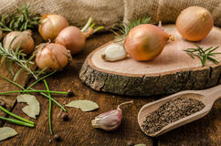 Onions, garlic and herbs bio from the garden Stock Photography