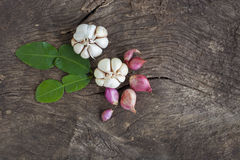 Onions, garlic, kaffir lime leaves stock photos