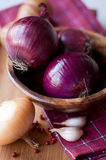 Onions, garlic and pepper Royalty Free Stock Photos