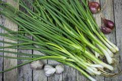 Onions garlic and welsh onion Stock Photography