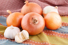 Onions and garlics Stock Images