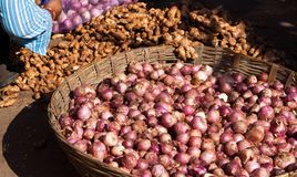 Onions and ginger Royalty Free Stock Image