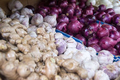 Onions, ginger and garlic Royalty Free Stock Photography