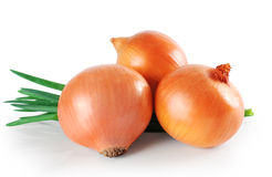 Onions, green onions isolated on white background. Stock Photos