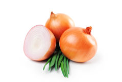 Onions, green onions isolated on white background. Stock Image