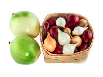 Onions green, white, red and yellow Royalty Free Stock Photography