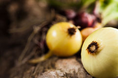 Onions on grunge wood Royalty Free Stock Photography