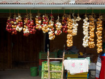 Onions after harvest. Collected onions after a harvest. Rural area royalty free stock images