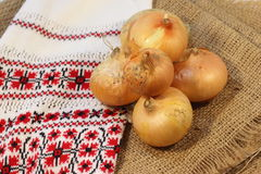 Onions in the husk Royalty Free Stock Image