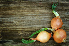 Free Onions In A Corner Of Old Board Royalty Free Stock Photography - 31128477