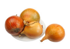 Onions, isolated Stock Image