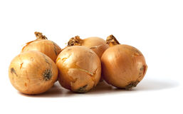 Onions isolated on white. Royalty Free Stock Image