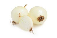 Onions isolated on a white background. Onion. Fresh onions isolated on a white background Stock Images
