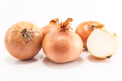 Onions isolated on white Stock Images