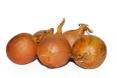 Onions, isolated on white Stock Photography