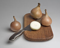 Onions on a kitchen board. Stock Photos