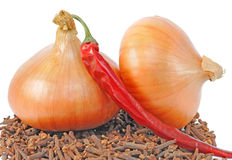Onions lie on condiment Royalty Free Stock Photo
