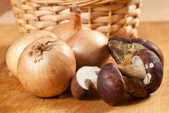 Onions and mushrooms Stock Image
