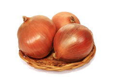 Onions napiform. The onions are the integral component of set of dishes Stock Images